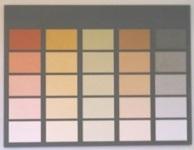 YOSIMA - Grundfarben
